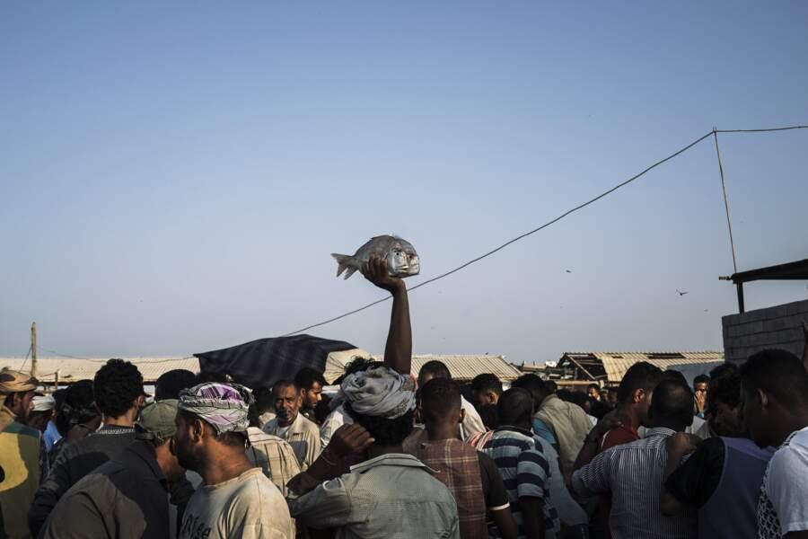 Crise au Yémen