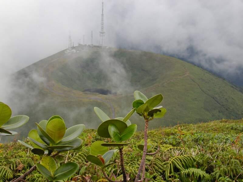 Le volcan de la Soufrière, à la fois emblème et totem de la Guadeloupe