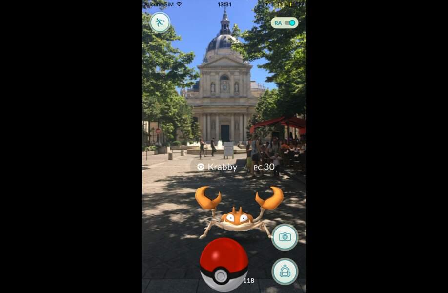 Krabby fait son entrée à la Sorbonne
