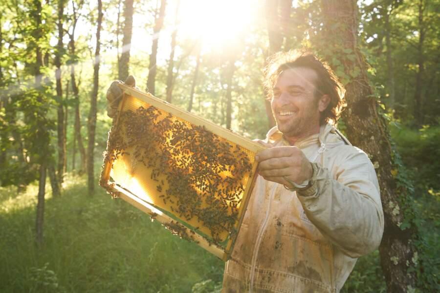 Les apiculteurs, meilleurs ennemis des abeilles
