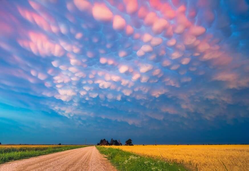 Oklahoma, États-Unis : d'inquiétants mamelons célestes