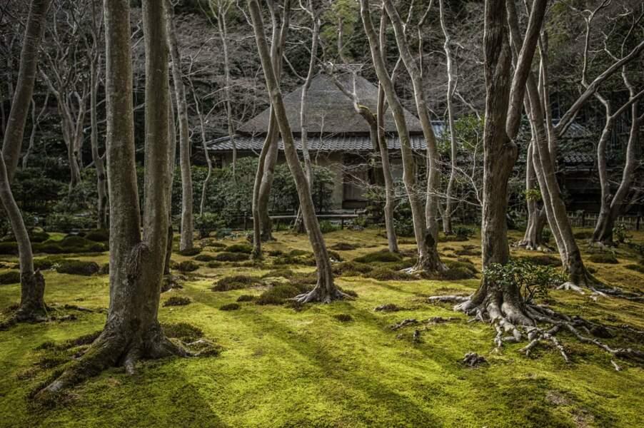 Le temple bouddhique Giō-ji