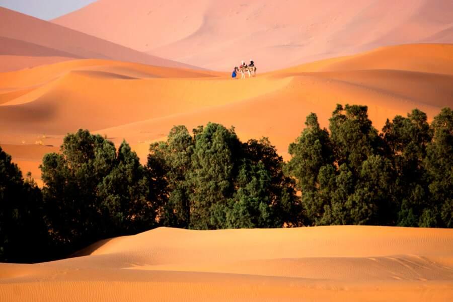 Echappée à dos de dromadaires dans les dunes de sable rouge de l'Erg Chebbi, au Maroc