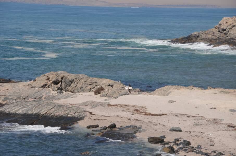 Les vagues glacées de l'Atlantique au Diaz Point