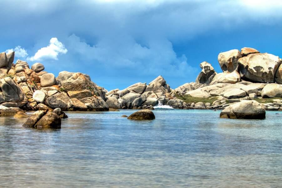 Les îles Lavezzi, la richesse des fonds marins corses