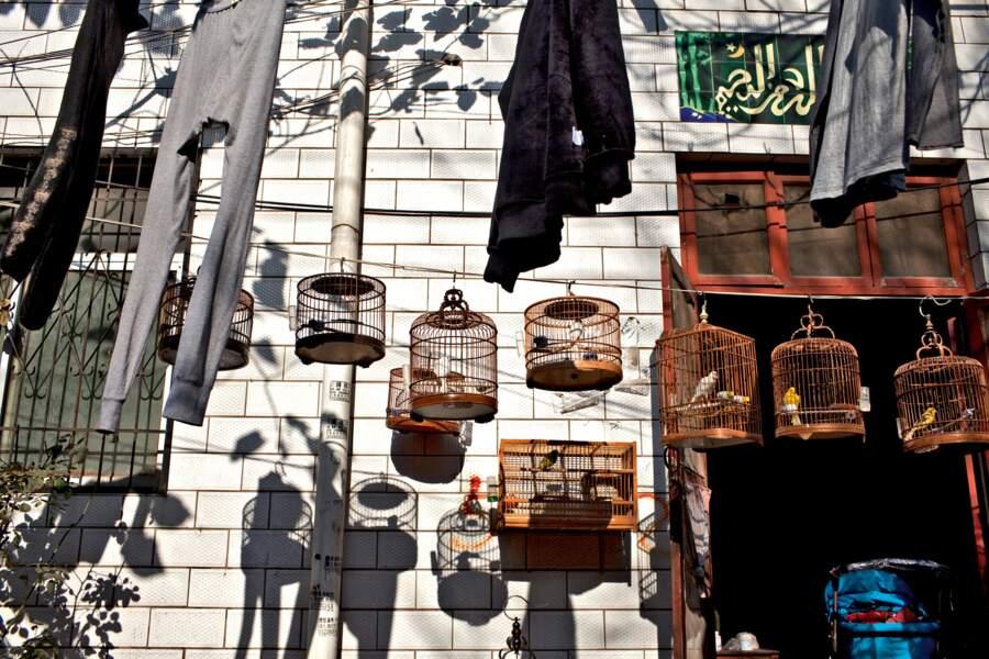 En Chine, 23 millions de personnes se tournent chaque jour vers La Mecque