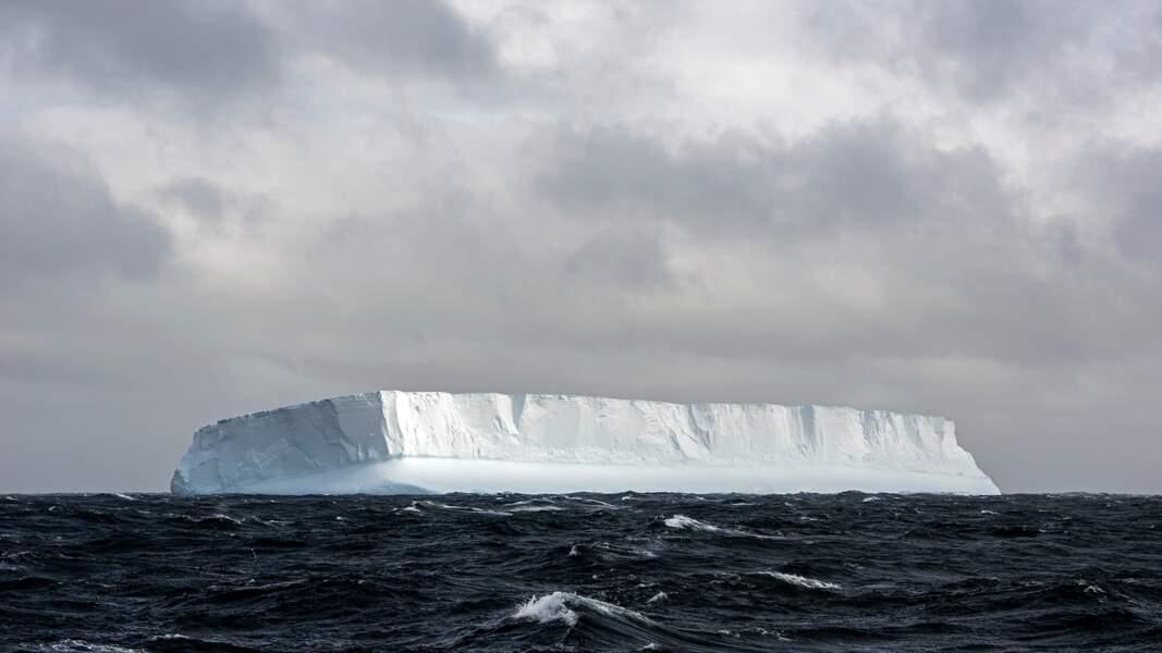Icebergs géants à l'est des Malouines