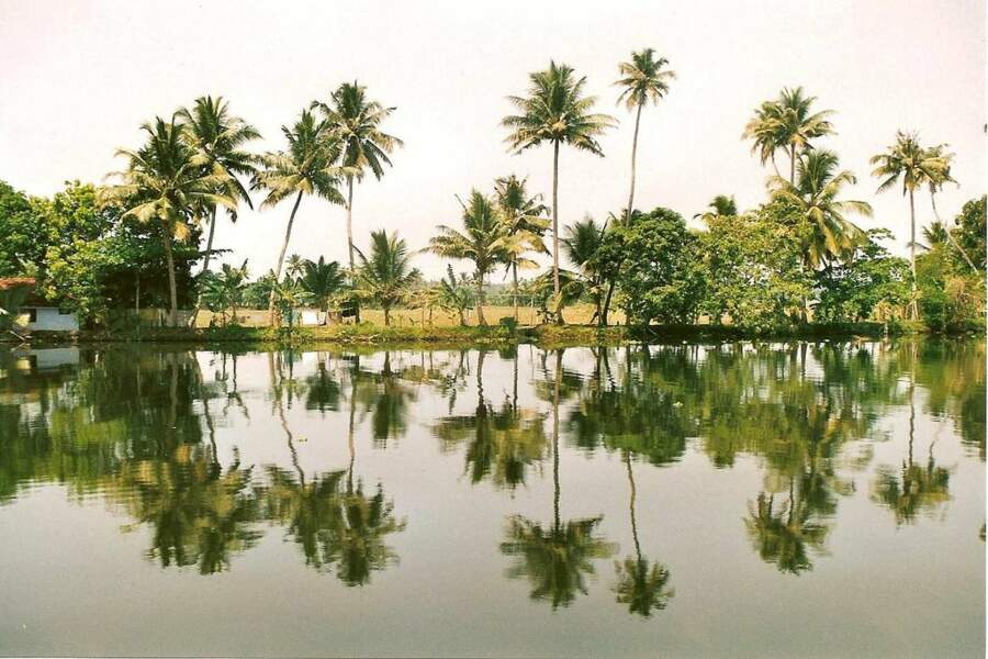 Photo prise au Kerala (Inde) par le GEOnaute : EricBubu