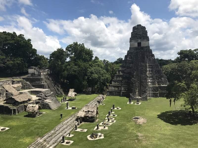 Tikal, la pyramide-tombeau