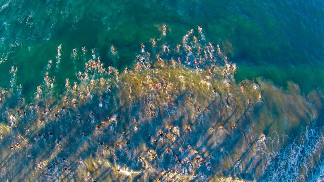Le départ de la course Tiki Swim à Oceanside en Californie, aux Etats-Unis