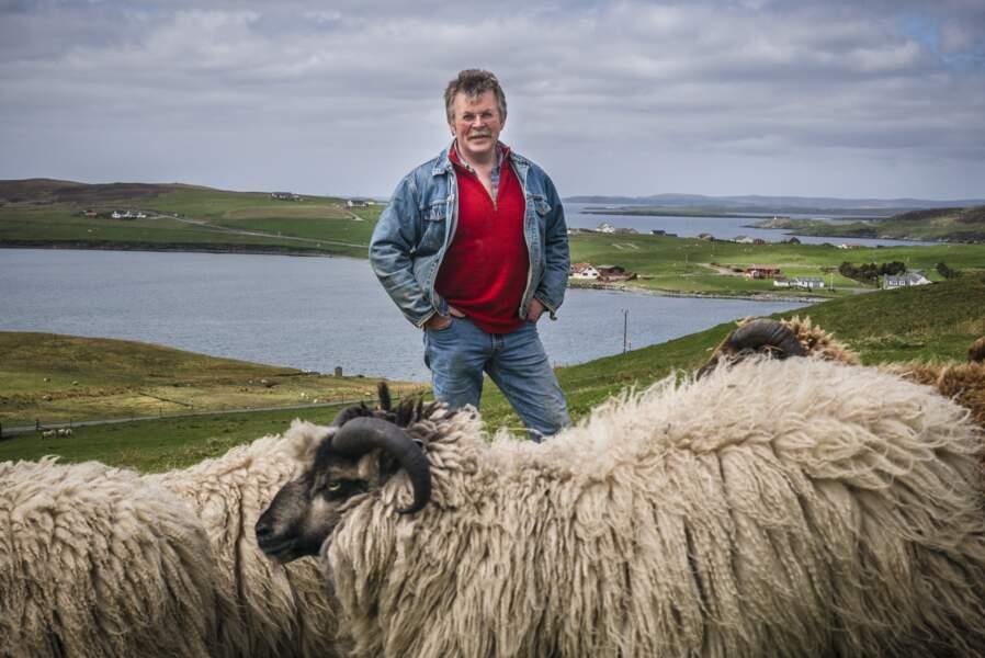 Éleveur de moutons shetlands