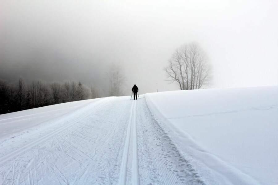 Photo prise dans le Massif du Jura par jpbourdeilh