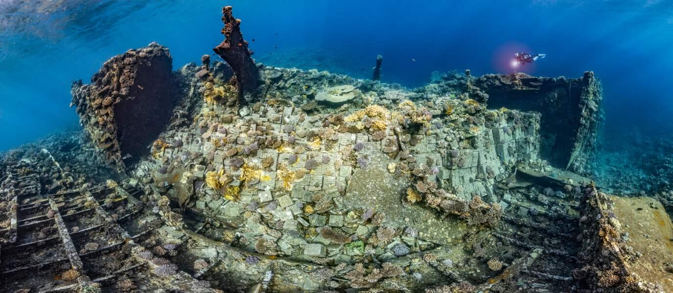 Une épave perdue en mer Rouge