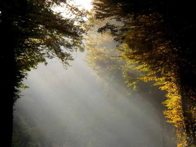 Voile de lumière par chantal