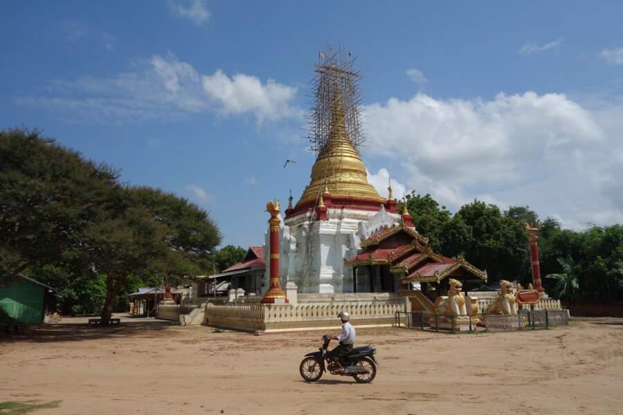 Angkor birman