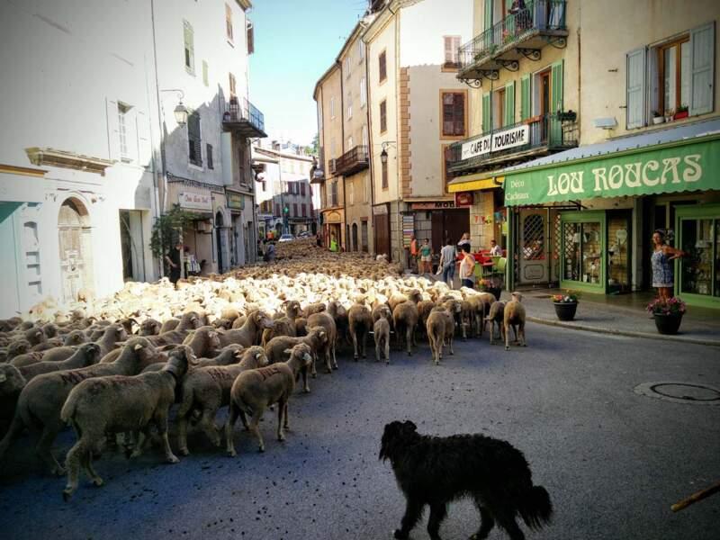 Spectacle dans Castellane