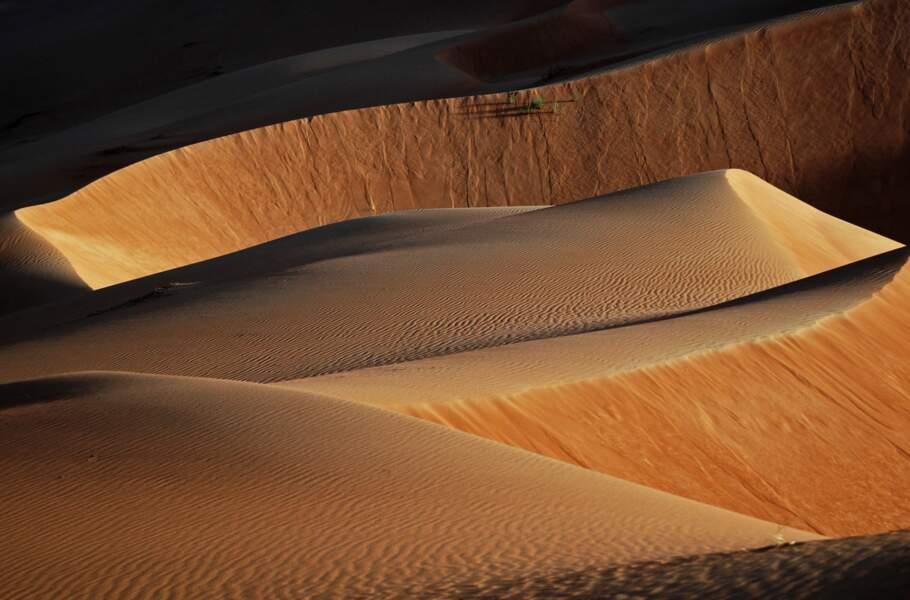 Photo prise dans le désert de Rub al Khali par Jean Zucchet