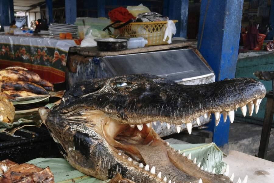 Un lagarto sur un marché d'Iquitos
