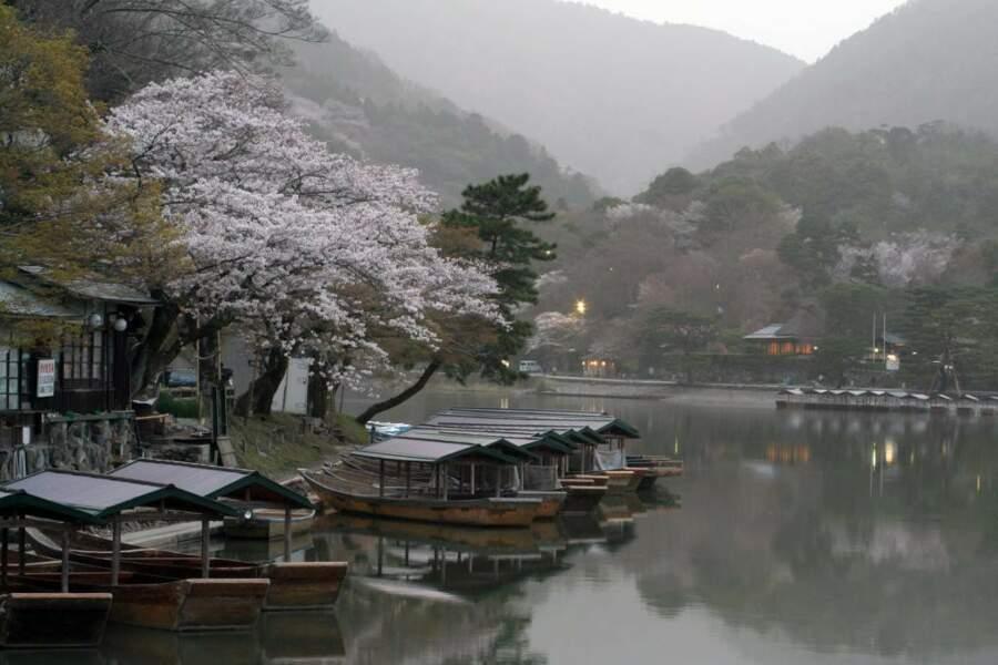 Fin de journée à Kyoto