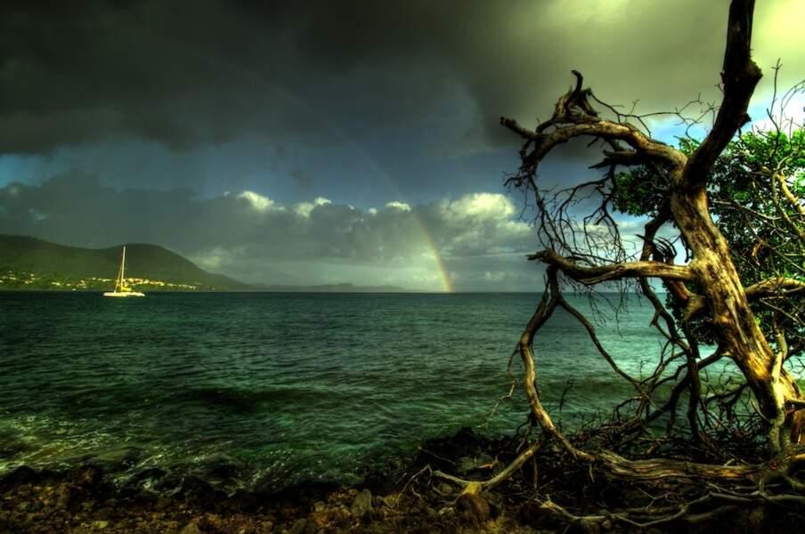 Photo prise par Haddouche Boualem en Martinique
