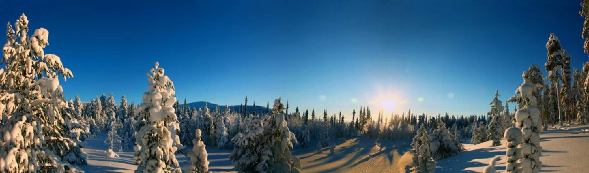 Photo prise en Laponie (Finlande) par le GEOnaute : chiquito