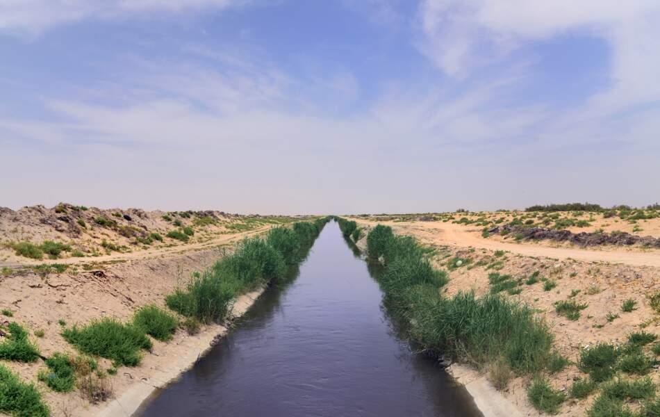 Oasis d'Al-Ahsa, un paysage culturel en évolution, en Arabie saoudite