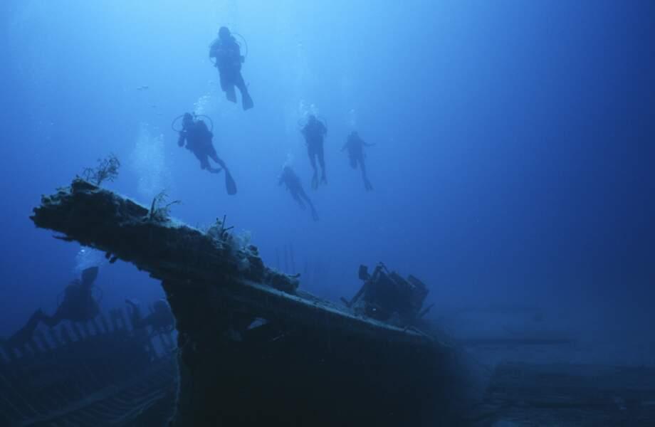 Plongeurs autour d'une épave