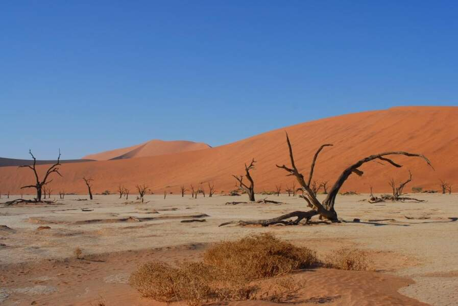 Dead Vlei, en Namibie, par Jean-Paul Bonnafe