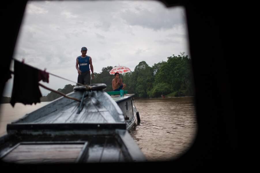 Convoyeur de troncs sur le fleuve Lamandau