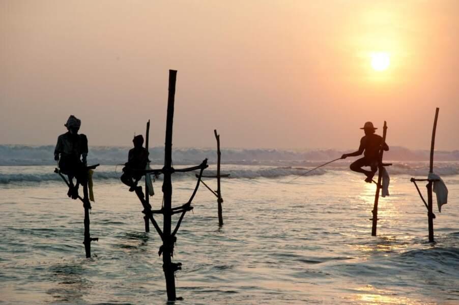Photo prise au Sri Lanka par Christian Leger