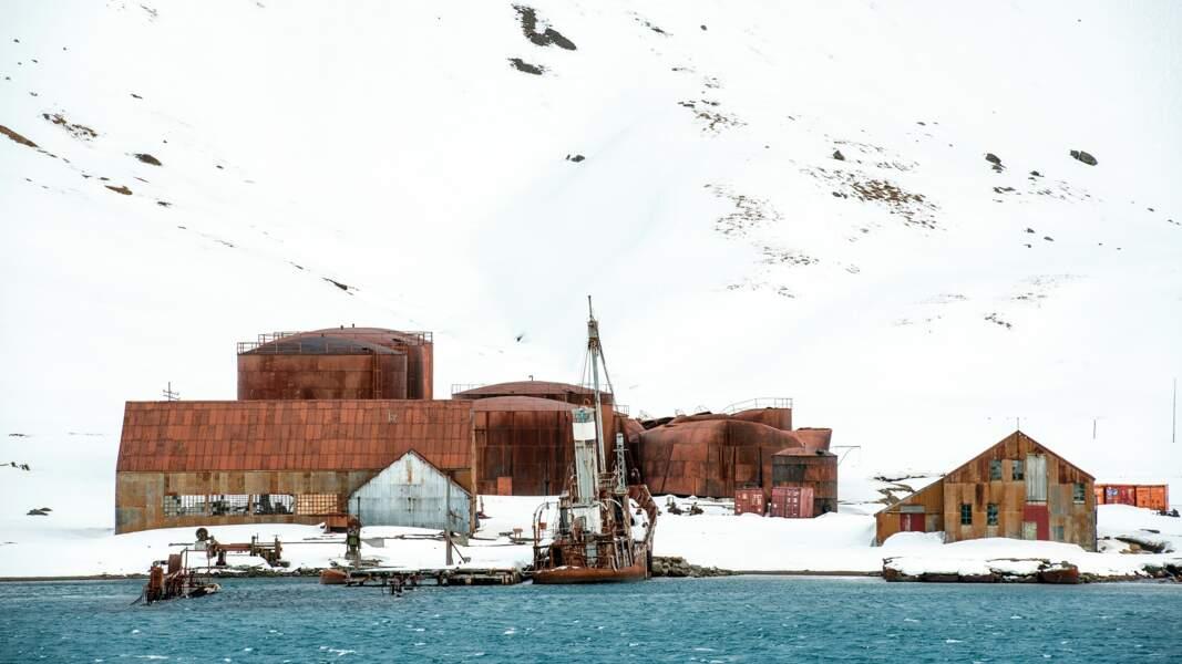 Station baleinière de Grytviken