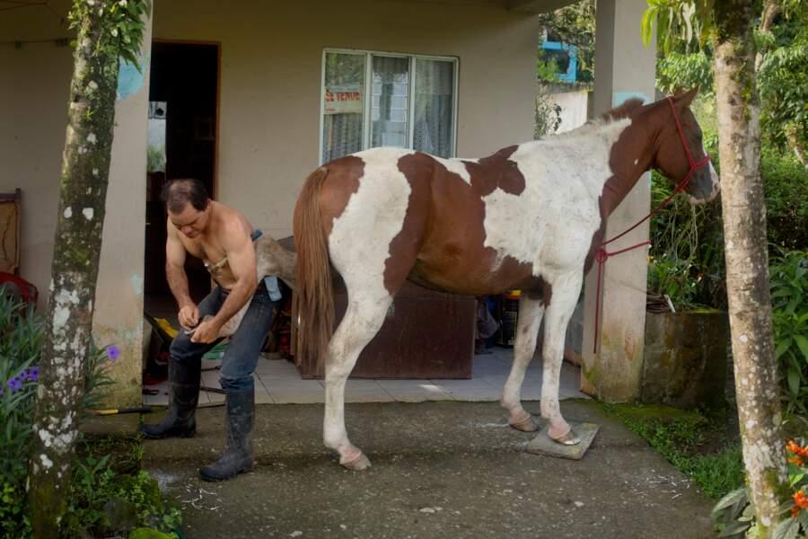 Une nature foisonnante qui se découvre aussi à cheval
