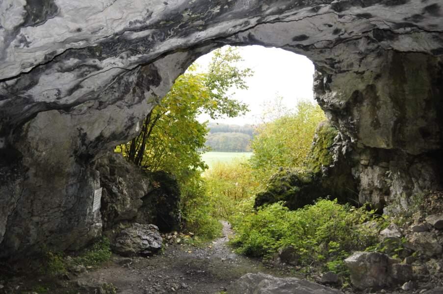 Grottes et l'art de la période glaciaire dans le Jura souabe, en Allemagne