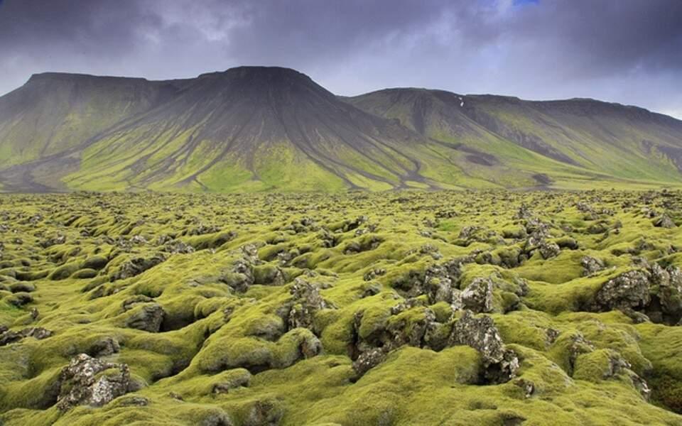 Les champs de lave de Reykjanes