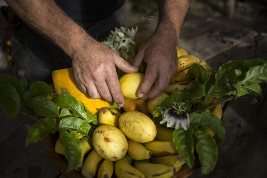 La Palma a son showman de la banane