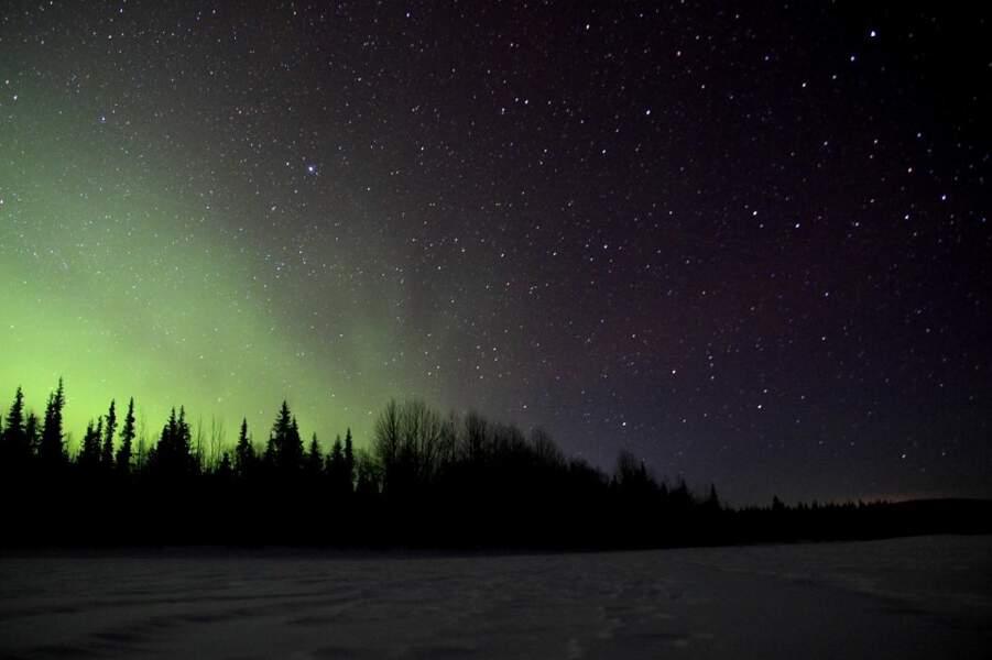 La cabane en pleine nature en Laponie : le camp Parakka