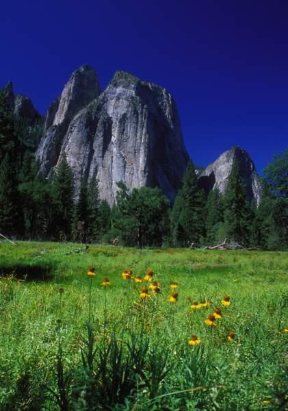 Le parc national de Yosemite, aux Etats-Unis