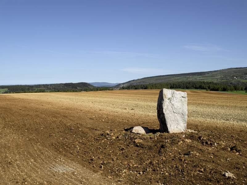 Sur le D35 entre le Pont-de-Montvert et le col de Montmirat, zone de menhirs