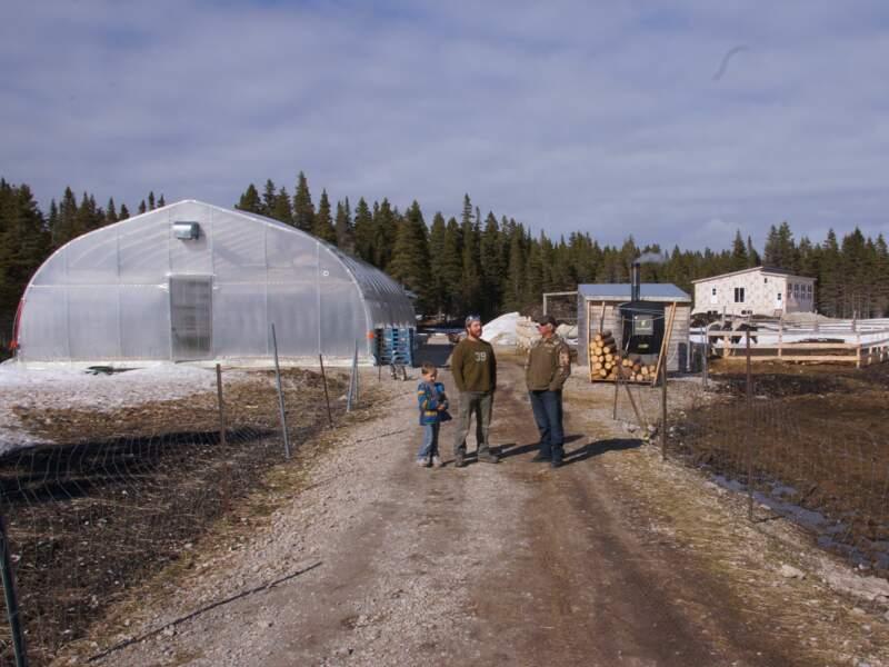 Une ferme bio à Anticosti