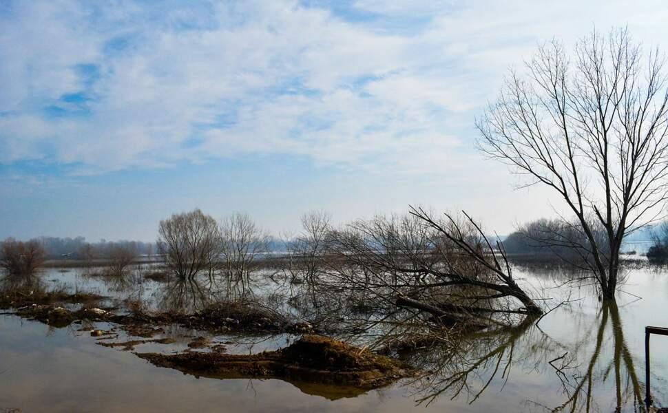 Le delta de l'Evros