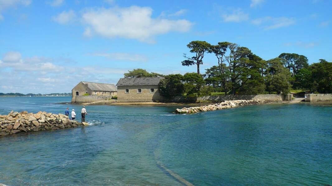 Golfe du Morbihan: un voyage au vert au bord de la mer