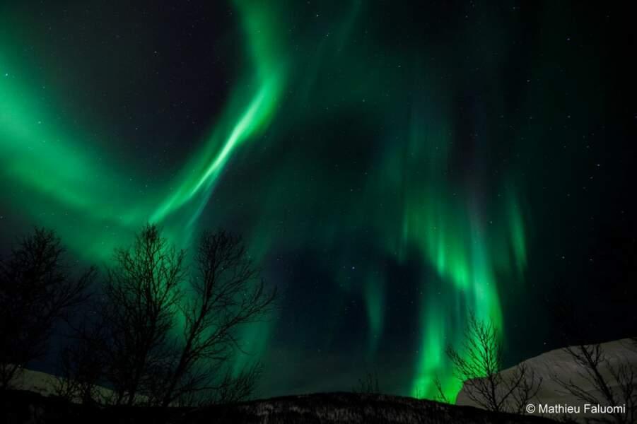 Aurore boréale à Tromso, en Norvège