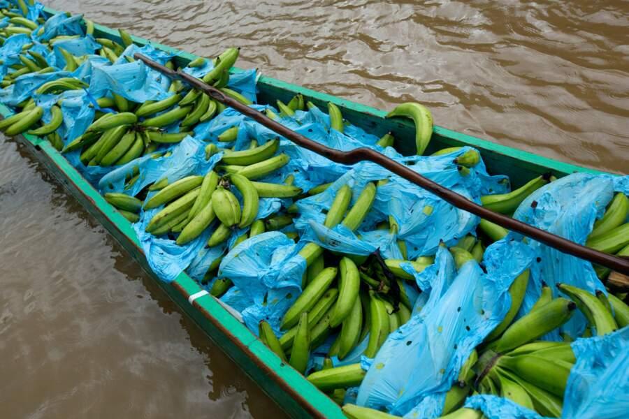L'activité touristique rapporte trois fois plus que les bananes
