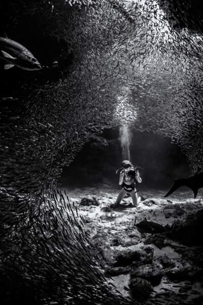 Tunnel de mercure