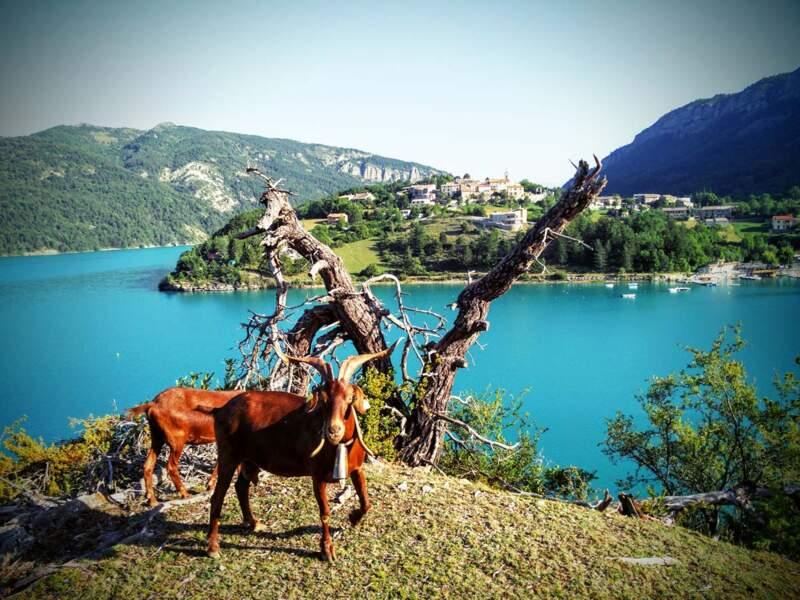 Un lac artificiel formé par le barrage de Castillon