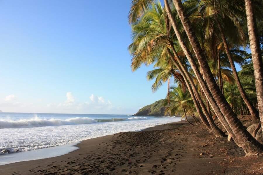 Photo prise par Jean-Marie Stettler en Guadeloupe