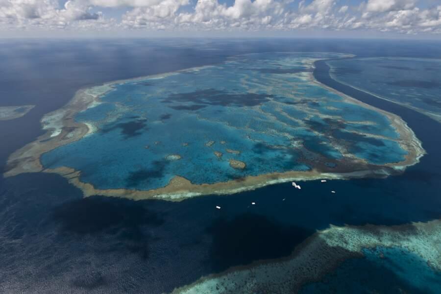 Récif Hardy, dans le sud de la Grande Barrière de corail