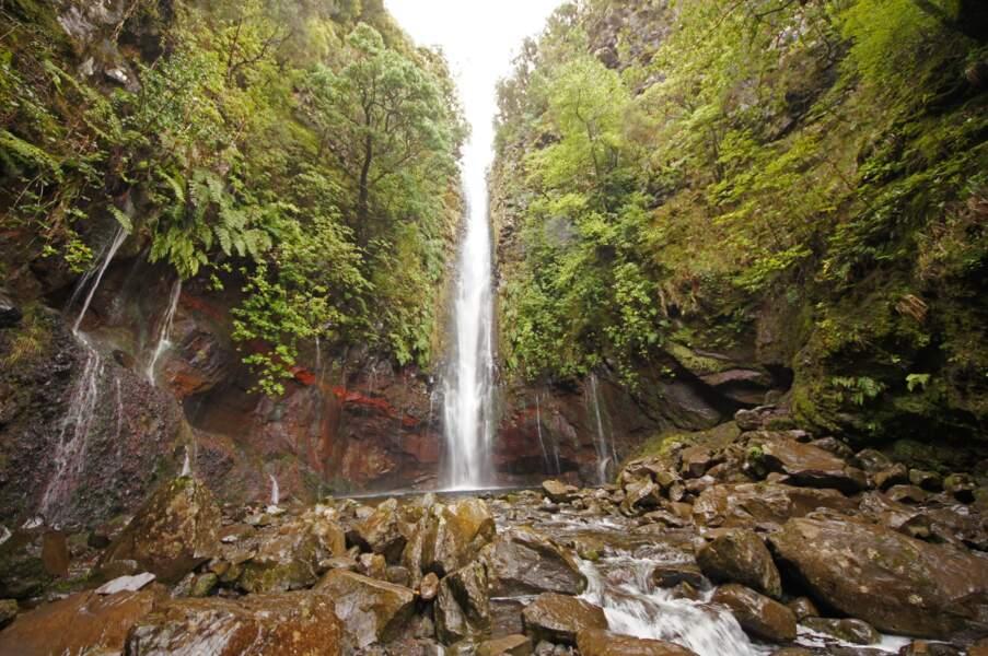 Les 25 sources et les cascades de Risco
