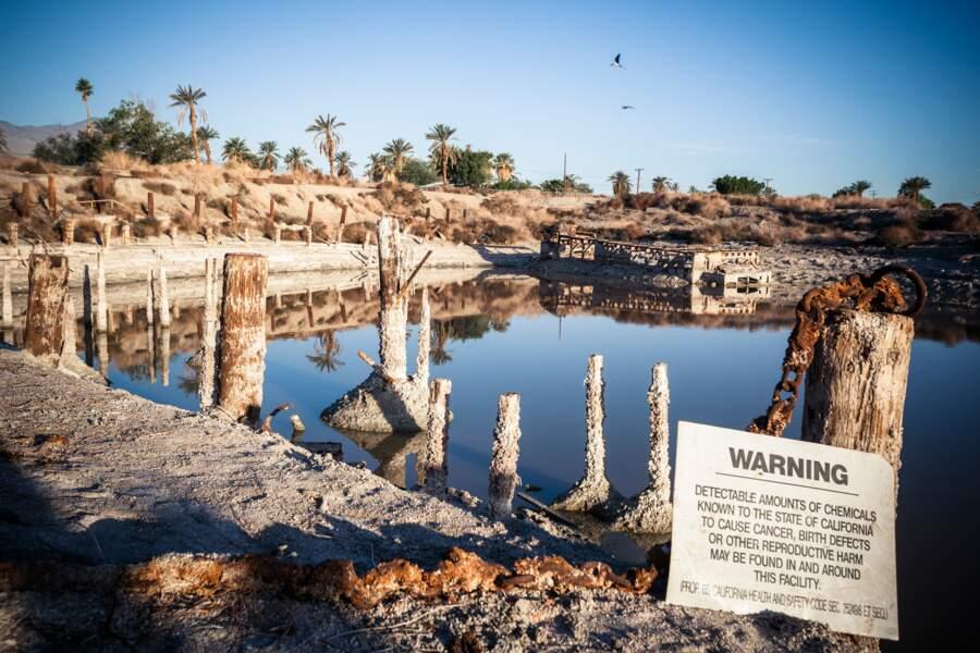 La mer de Salton est en train de mourir d'empoisonnement