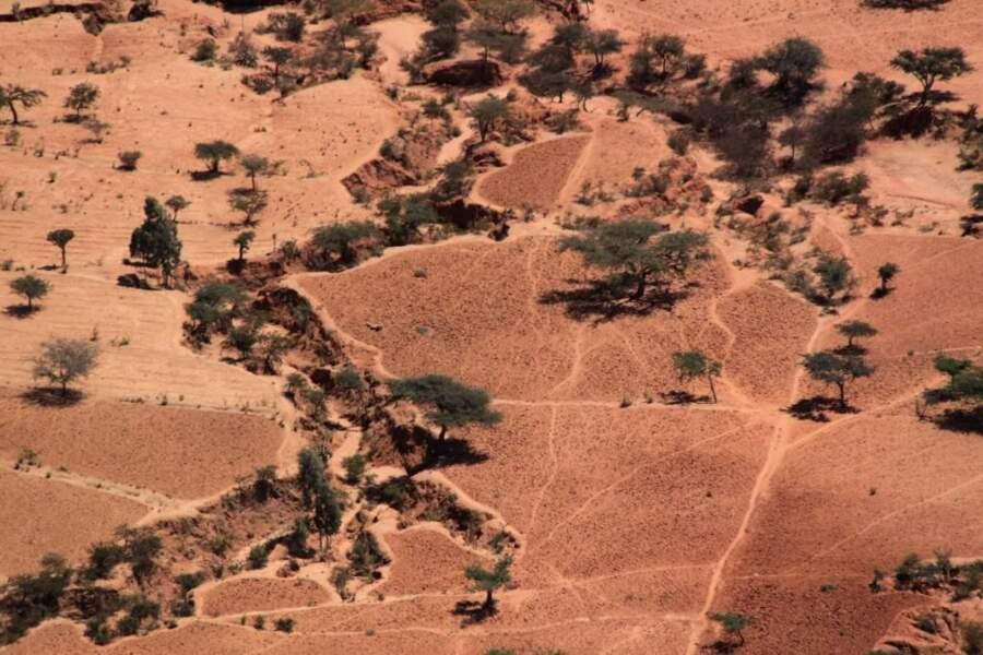 Photo prise au nord de l'Ethiopie, par ludo